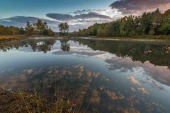 Loofles (johan wieland) Tags: 2016 veluwe autumn herfst loofles kootwijk gelderland netherlands nl