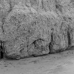 DSCF0725 (rjosef) Tags: borrego desert