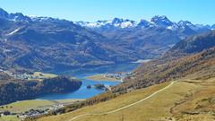 Alp Giop, 13.10.17 (ritsch48) Tags: engadin graubünden stmoritz alpgiop lejdachampfèr lejdasilvaplana silvaplanersee