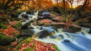 Merveille d'automne ...
