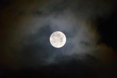 The Moon and some clouds (juliatatiana.holmgren) Tags: northofsweden nature nikond3200 nikon1855mm naturebynikon nikonphotos naturenikon moon moonshoot moonpics dslr digitalnikoncamera digitaldslr nightphotography nightphotos colors luna sky nightsky clouds sweden mooncapture moonlovers fullmoon moonphotos themoon whitemoon moonwithclouds