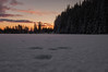 Norwegian nature (steffos1986) Tags: nature landscape snow sky dawn sunset tree winter color red yellow blue cold norwegian norwegen noruega countryside nikond50 nikon2880af november tripod europe scandinavia forest animaltraces pond lake ice frozen frost norge