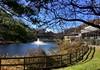Park School pond (karma (Karen)) Tags: parkschool pikesville maryland ponds trees fences shadows fountains windows hff iphone topf25