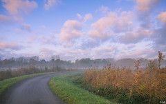 Misty Morning (Martine Lambrechts) Tags: misty morning landscape nature clouds