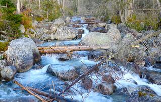 Horská bystřina ve Vysokých Tatrách   a Mountain stream in Tatry Highlands   SLOVAKIA