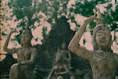 The Land of Smiles 2.0 | Nikon FE2 | Nikkor 50mm (f1.8) (IG @ Meandergraph) Tags: thailand krabi bangkok chiangmai phuket kohsamui travel asia southeastasia streetphotography film analog 35mm filmphotography nikon nikonfe2 nikkor50mm 50mm