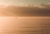 Tanker in the glow (pearce_m) Tags: sunrise bondi beach oceanscape