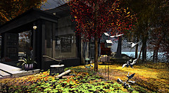 Lost Cafe (SLRedFire) Tags: secondlife deciduous sl virtualworld coffeeshop cafe landscape