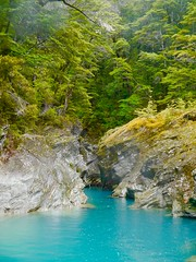 Magical Dart River in New Zealand on a Rainy Day (Seymour Lu) Tags: blue newzealand middleearth queenstown jet boating landscape travel rain raining panasonic lumix vario dmcg5 aqua outdoors boat glacier photography dart kiwi green cold moss nature corner