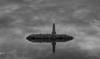 Faro solitario (adiazmi) Tags: faro isla mar oceano solitario luz agua aves reflejo