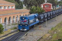 Locomotora 5 CAP   Estación La Serena (Felipe Radrigán) Tags: tren ferrocarril train railroad railway locomotora locomotive cap diesel hierro iron estacion laserena coquimbo chile