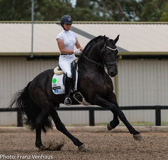 171202_Clarendon_YH-2709.jpg (FranzVenhaus) Tags: younghorses athletes spectatorsvolunteers dressage supporters riders horses officials equestrian sydney newsouthwales australia aus