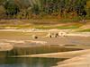 _A154343 (elsuperbob) Tags: penne pescara abruzzo italy italia drought digadipenne lagodipenne fiumetavo beach fishing ruins emptyspaces lake dam reservoir
