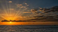 Follow the Sun (Jörg Bergmann) Tags: 20f17 islascanarias lagomera puestadesol sonnenuntergang vallegranrey atardecer boat canarias canaryislands clouds españa gm1 gomera lumix m43 mft ocean panasonic sailing sky spain sun sunrays sunset travel vacation oneboat puesta de sol landscape seascape horizon sunbeams sunlight light microfourthirds micro43 skyscape