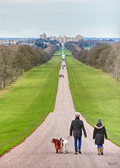 The long walk (Rob McC) Tags: path people castle windsor park road landscape perspective