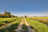 Viboldone (ccr_358) Tags: ccr358 2016 summer august italy italia day nikon d5000 nikond5000 sunny lombardia milan milano wideangle viboldone viboldoneabbey abbaziadiviboldone sangiulianomilanese fields path landscape vanishingpoint canal countryside