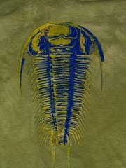 Trilobite - your choice of colors (craftyscientists51) Tags: geekshirt science tshirt women animal geek tiedye screenprint punk biology evolution trilobite teacher handmade