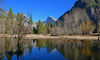 Cold Morning Yosemite - 804 (simpsongls) Tags: yosemite nationalpark mercedriver reflections halfdome trees forest meadow mountain tree sky lake water woods serene landscape