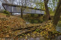 Switzer covered wood bridge. (Ulrich Burkhalter) Tags: 20171112 elkhorncreek franklincounty switzerbridge coveredbridge imgp2367pedited1