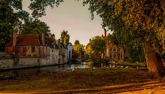 Bruges. (ost_jean) Tags: bruges landscape nikon d5200 tamron sp af 1750mm f28 xr di ii vc ld aspherical if ostjean brugge europe belgium belgica belgie natuur nature houses swan zwanen dieren bomen arbre