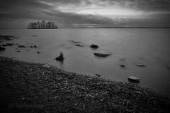 Dark Beach - Finland (Sami Niemeläinen (instagram: santtujns)) Tags: joensuu suomi finland pohjoiskrajala north carelia lake järvi pyhäselkä kuhasalo kalmonniemi mustavalkea monochrome bw bwphoto