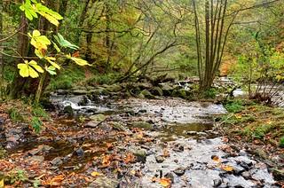 The Teign Gorge in autumn - Dartmoor
