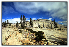 Yosemite National Park (Carme Baraut) Tags: natura california usa eua nature califòrnia yosemitenationalpark