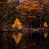 Autumn's Beacons (Photo CDR) Tags: autumn autumncolors canon fall fallcolors leaves nj newjersey park rahway trees ngc