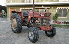 Massey Ferguson 175 S (samestorici) Tags: trattoredepoca oldtimertraktor tractorfarmvintage tracteurantique trattoristorici oldtractor veicolostorico 175s