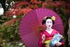Mameryu - Maiko in Kyoto 03 (JUNEAU BISCUITS) Tags: maiko geisha japan kyoto gion portrait portraiture japanese nikond810 nikon kimomo umbrella beauty grace