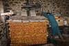 Pressage des pommes à cidre (Oric1) Tags: pomme cidre bretagne pressoir 22 canon côtesdarmor france jeanlucmolle oric1 pléven armorique breizh brittany eos argoat seigle paille tradition vintage