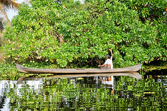 Backwaters, Kerala (Valdas Photo Trip) Tags: india kerala backwater travel travelphotography