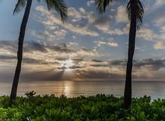 Sunrise in Akumal (Inti Runa) Tags: canoneos5dmarkiv canonef2470mmf28iil akumal beach mexico quintanaroo rivieramaya sunrise tourism latinamerica tulum
