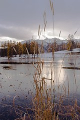 Automne lac du Roux-4 (jluclac) Tags: automne eau france french lacduroux lacs paysages queyras water lake