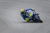 Valentino Rossi (BP Chua) Tags: valentino rossi rossi46 motogp motorbike motorcycle bike racer rider race track sepang circuit malaysia shell yamaha corner canon 7d2 46 blue italian