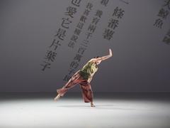 _9040111 (黎島羊男) Tags: 雲門 關於島嶼 林懷民 formosa cloudgatedancetheatre cloudgate dance theatre linhwaimin olympus em1markii zuiko 1454mm