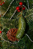 The Christmas Pickle (Busy-Off To Canada Friday) Tags: odc unconventional ornament christmas dillpickle green glass germantradition