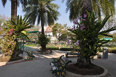 Wat Luang Phor Toh temple at Sikhio, Nakhon Ratchasima (massimoperrozzi23) Tags: wat luang phor toh temple sikhio nakhon ratchasima