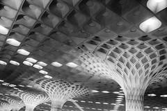 Mumbai, India (gstads) Tags: mumbai bombay india indian airport chhatrapatishivaji chhatrapatishivajiairport bom architecture line lines curve curves geometry geometric ceiling pillar pillars