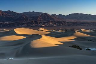 *Mesquite Flat Sand Dunes @ Golden Hour*