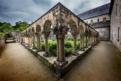 Abbaye de Daoulas (Faouic) Tags: france bretagne finistère daoulas abbaye cloître