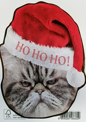 Animals - Cats - Humor - Santa-Cat (a_garvey) Tags: postcard postcrossing humor shaped miscellaneous christmass available