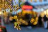 Golden Leafes Photo # 8 of a Christmas Series (*Capture the Moment*) Tags: 2017 backlight backlit blätter bokeh christmasmarket dof fotowalk gegenlicht leaf leafes munich münchen nachtaufnahmen nightshot pflanzen sonya7m2 sonya7mii sonya7mark2 sonya7ii sonyilce7m2 weihnachtsmark weihnachtsmarkt zeisssonyfe1855 bokehlicious