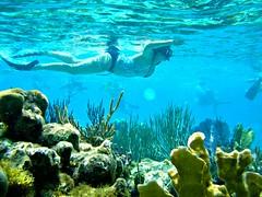 Tropical Fish (jemingway3) Tags: wet water tropical ocean sea under mom milf mature married wife hotwife lynda legs swimsuit swimwear caymanislands shared bi bisexual lez lesbian