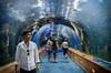 DSC_1617.jpg (albtormar1) Tags: artes concreto futurismo ciencias arquitecturamoderna félixcandela seaworld oceanografic ciudaddelasartesylasciencas hormigón valencia mundomarino españa arquitectura
