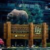 Good spot to hibernate (Pejasar) Tags: bearsign grizzlyinn motel jacksonhole wyoming redvehicle pinetrees goldenarrow