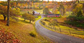 Scenes of Sleepy Hollow Farm #1