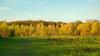 An Autumn Stroll (paulapics2) Tags: autumn fall november gate sunny canoneos5dmarkiii canonef2470mmf4lisusm 7dwf