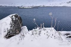 171009-1902-grimsel (One more trip) Tags: alpy alpyberneńskie oberaargletcher oberaarsee szwajcaria lodowiec