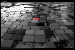 IMG_0001 (anto-logic) Tags: manicomio madhouse ferri volterra rosso red bw bn blackandwhite biancoenero selectivecolor coloreselettivo mosaico tavolo table mosaic opv pazzia paura madness fear ospedalepsichiatrico abbandonato iluoghidellabbandono rovine rudere psychiatrichospital abandoned theabandonmentplaces ruin ruins vecchio vetusto old decrepit inquietante eerie composizione luce luci puntodivista profonditàdicampo design composition compo light lights pointed tip pointofview depthoffield beautiful pov dof bokeh wonderful fabulous eos canon